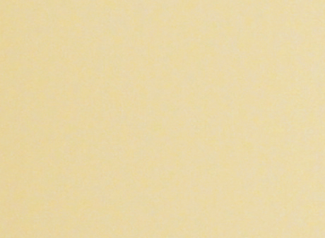 Champagne Colour Swatch