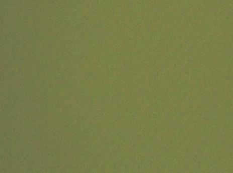 Moss Green Colour Swatch