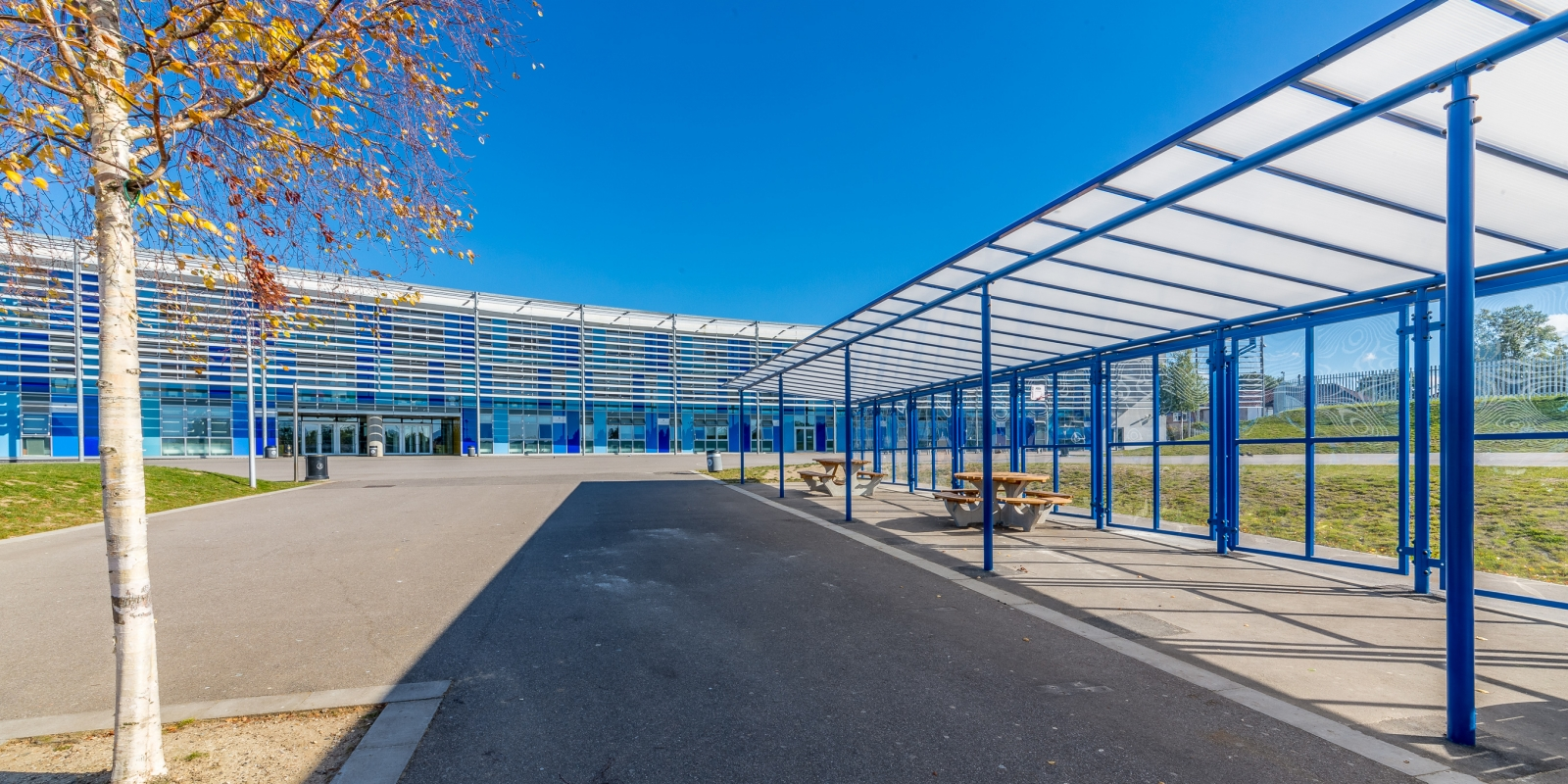 Motiva Linear Canopy Walkway